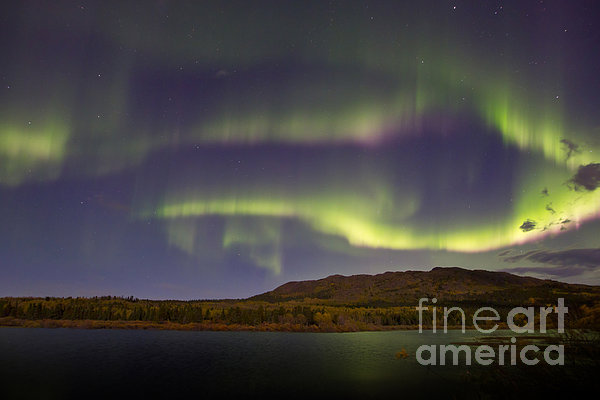 Horizontal Photograph - Aurora Borealis With Moonlight At Fish by Joseph Bradley