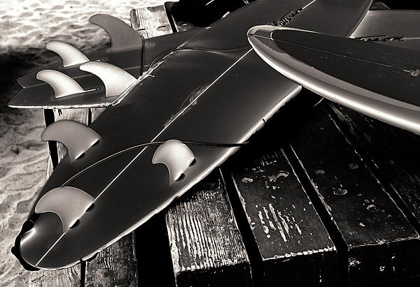 California Photograph - Fins And Boards by Ron Regalado