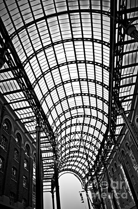 Hays Photograph - Hays Galleria Roof by Elena Elisseeva
