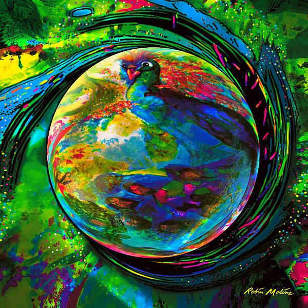 Peacock Digital Art - Orb Of Pavone by Robin Moline