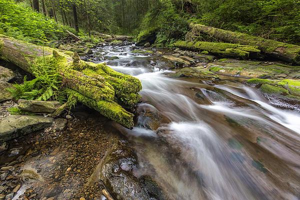 Horizontal Photograph - Rush Rush by Jon Glaser