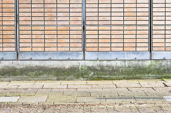 Abstracts Photograph - Wall Background by Tom Gowanlock