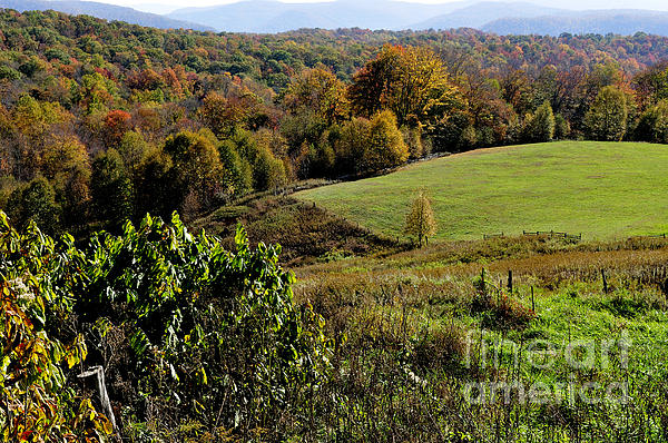 Fall Photograph - West Virginia Fall Color by Thomas R Fletcher