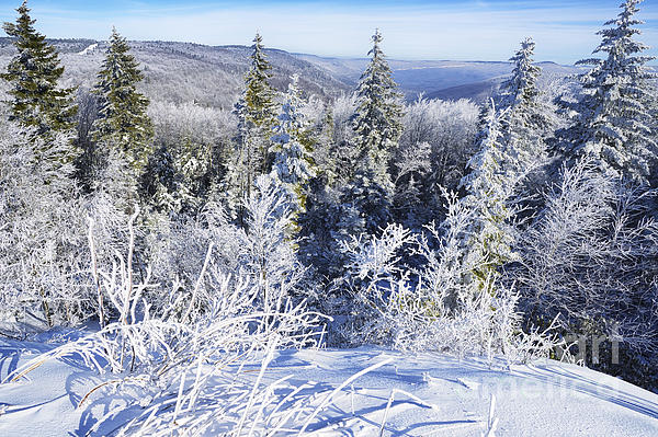 Winter Photograph - Winter Along The Highland Scenic Highway by Thomas R Fletcher