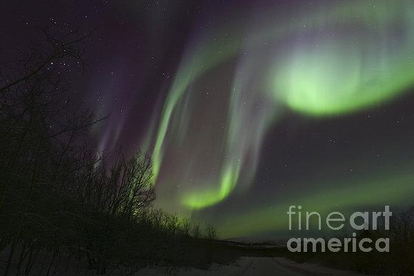 Horizontal Photograph - Aurora Borealis By Fish Lake by Joseph Bradley