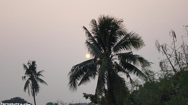 Beautiful Evening Photograph by Gornganogphatchara Kalapun