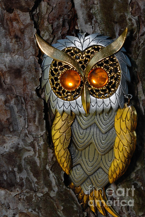 Amber Photograph - Faux Owl With Golden Eyes by Amy Cicconi