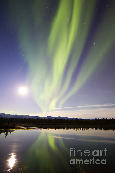 Vertical Photograph - Aurora Borealis And Full Moon by Joseph Bradley