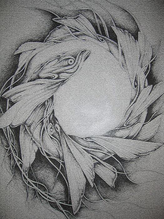 Fish Drawing - Fish by Moshfegh Rakhsha