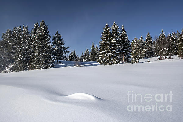 Background Photograph - Beautiful Winter Landscape by IB Photo