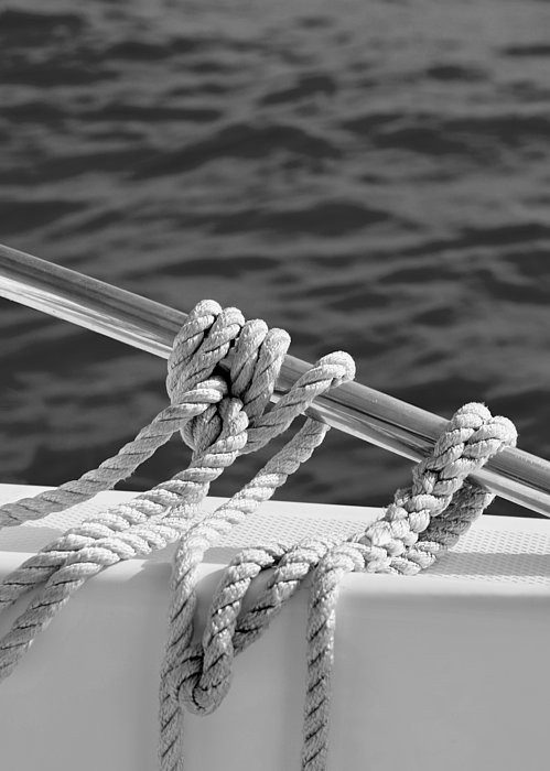 Sailor Photograph - The Ropes by Laura Fasulo