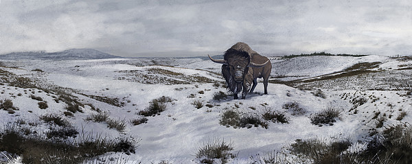 Color Image Digital Art - A Bison Latifrons In A Winter Landscape by Roman Garcia Mora