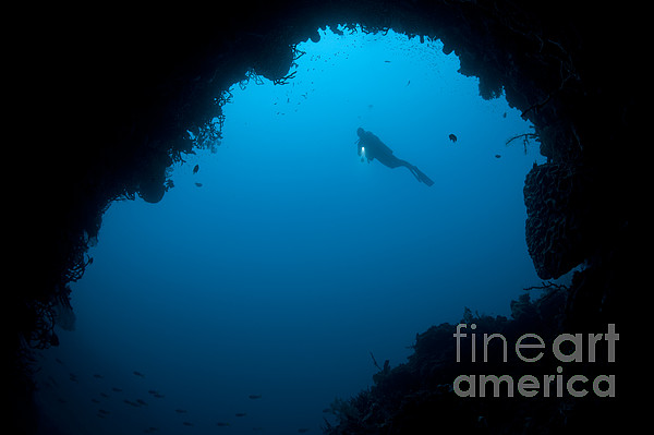 Cavern Photograph - A Diver Explores A Cavern In Gorontalo by Steve Jones