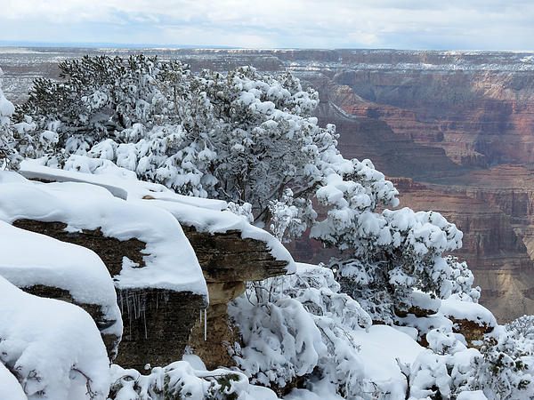 Snow Photograph - A Foot At The Canyon by Laurel Powell