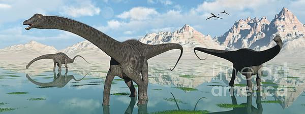 Herbivore Digital Art - A Group Of Diplodocus Dinosaurs Grazing by Mark Stevenson