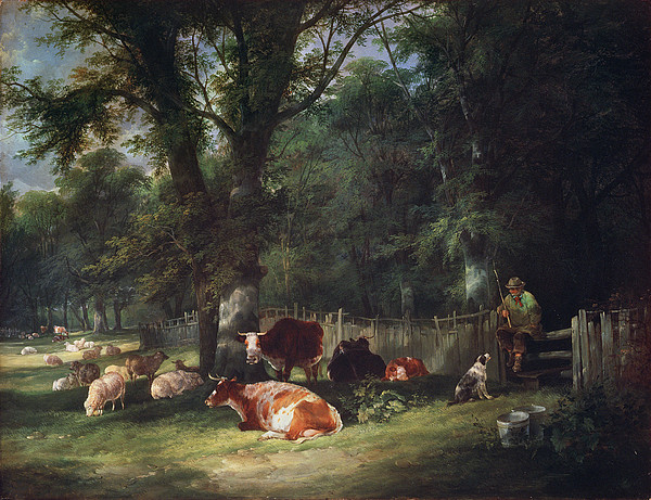 Cattle Painting - A Shady Corner by William Snr. Shayer