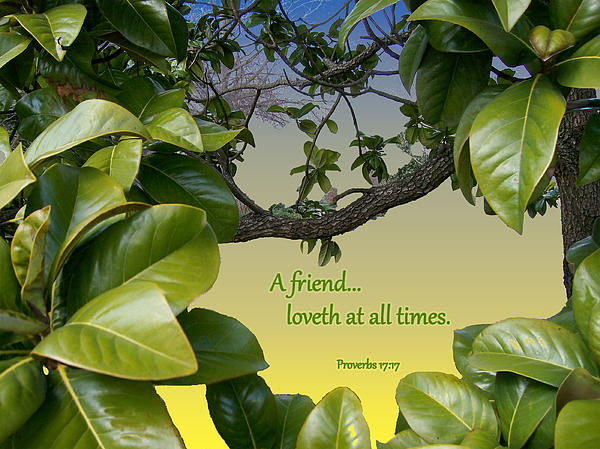 Friend Photograph - A True Friend by Larry Bishop