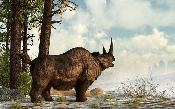 Outdoors Digital Art - A Woolly Rhinoceros Trudges by Daniel Eskridge