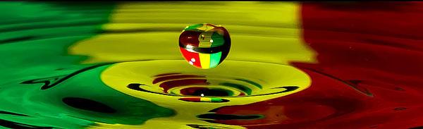 African Digital Art - African Splash by Brendan Quinn