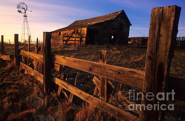 Alberta Photograph - Alberta Homestead by Bob Christopher