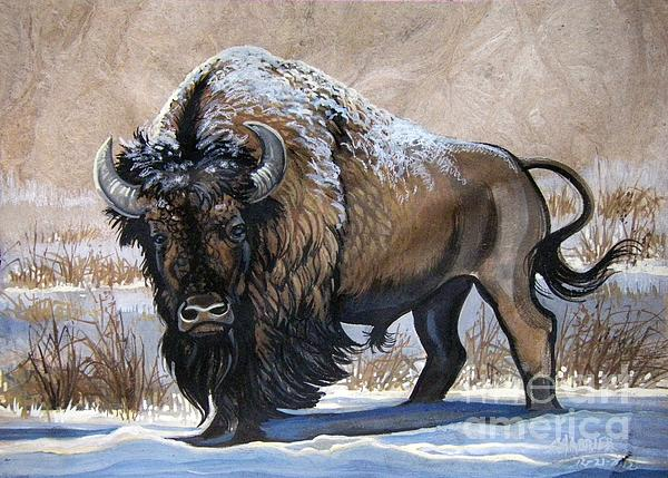 Chabrier Painting - American Bison Winter by Anne Shoemaker-Magdaleno