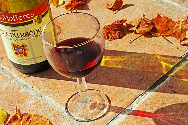 Alcohol Photograph - An Autumn Glass Of Red by Georgia Fowler