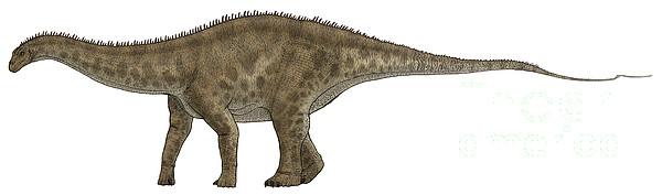 Horizontal Digital Art - Apatosaurus, A Sauropod Dinosaur by Vitor Silva