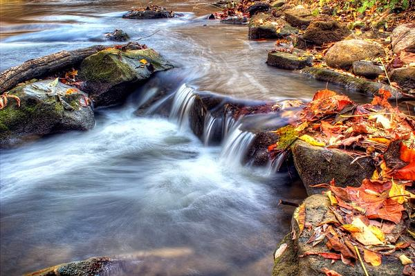 Fall Photograph - Art For Crohns Hdr Fall Creek by Tim Buisman