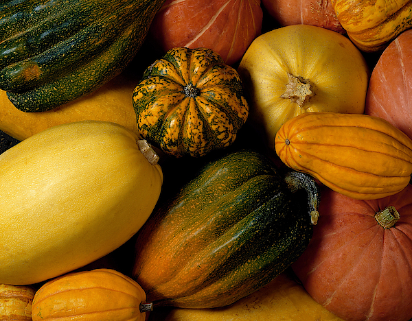 Assortment Of Squash Photograph by Brand X Pictures