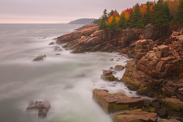Autumn Acadia Photograph by Image by Michael Rickard
