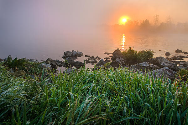 Landscapes Photograph - Autumn Morning II by Davorin Mance