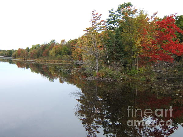 Reflection Photograph - Autumn Reflection by Margaret McDermott