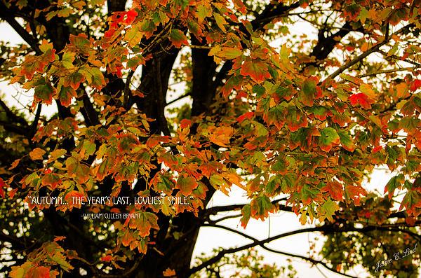 Fall Photograph - Autumn Smile by Jaime Lind