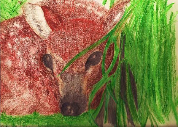 Wildlife Pastel - Babe In The Woods by Deborah Gorga