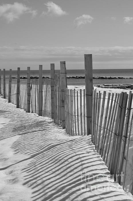 Snow Photograph - Beach Snow  by Catherine Reusch Daley