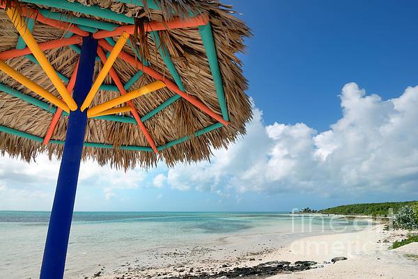 Bahamas Photograph - Beach Umbrella At Coco Cay by Amy Cicconi