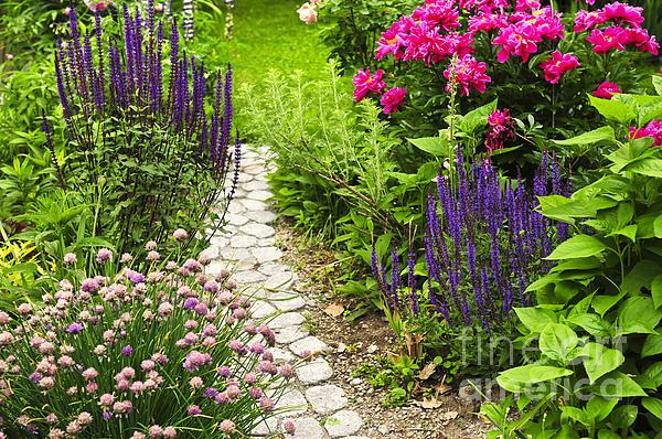 Beautiful Photograph - Beautiful Gardening by Boon Mee