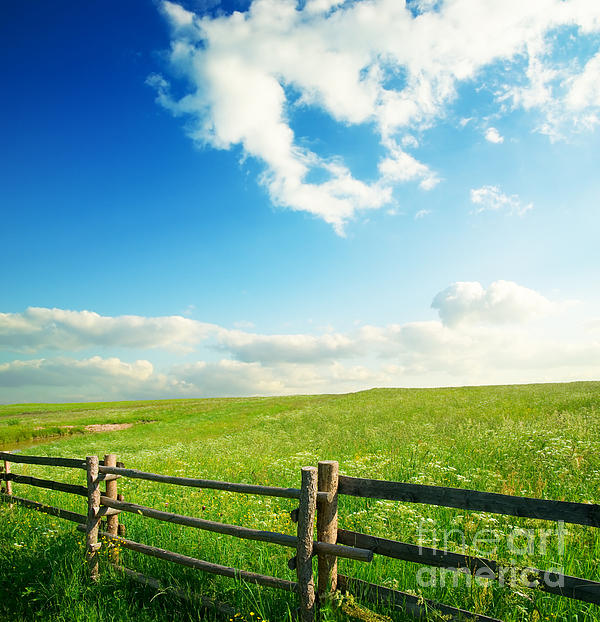 Beautiful Sky Photograph - Beautiful Sky On Greens Landscape by Boon Mee