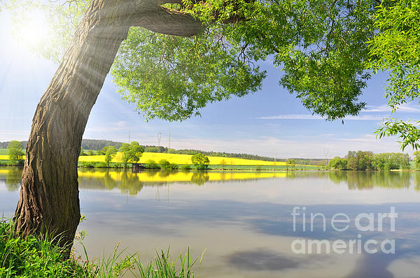 Beautiful Photograph - Beautiful Spring Landscape by Boon Mee