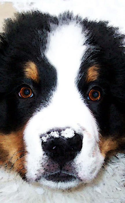 Bernese Mountain Dog Painting - Bernese Mountain Dog - Baby Its Cold Outside by Sharon Cummings