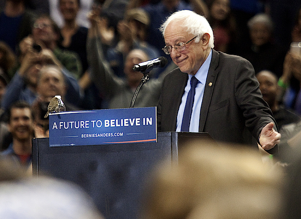 Bernie Sanders Holds Campaign Rally In Portland, Oregon Photograph by Natalie Behring
