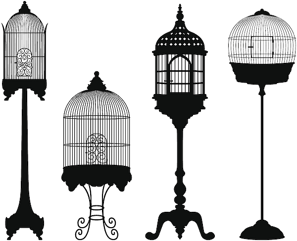 Birdcage Silhouettes Drawing by SongSpeckels