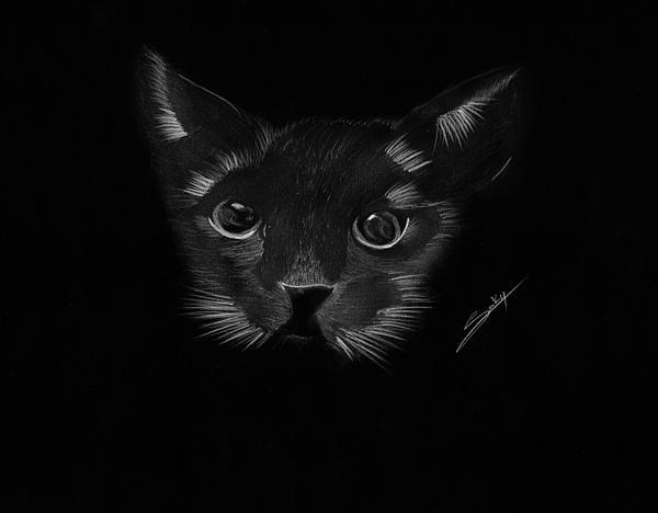 Black Painting - Black Cat by Saki Art