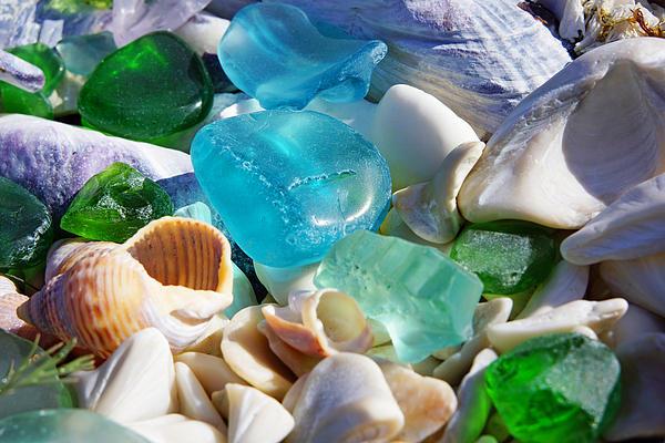 Decorative Photograph - Blue Green Seaglass Shells Coastal Beach by Baslee Troutman