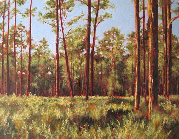Trees Painting - Blue Sky by Carlynne Hershberger