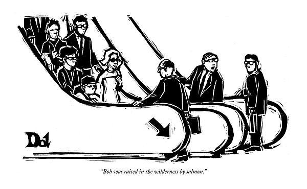 Bob Was Raised In The Wilderness By Salmon Drawing by Drew Dernavich