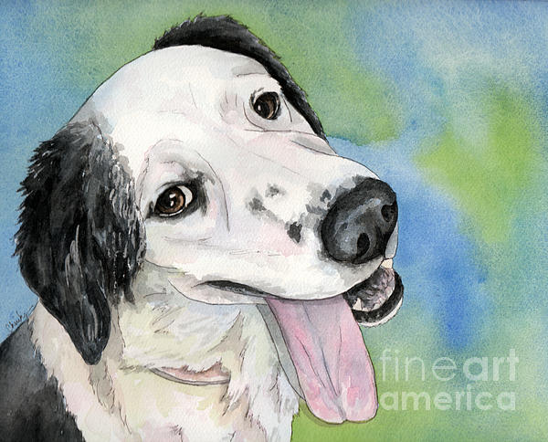 Border Collie Mix Painting - Border Collie Mix Dog by Cherilynn Wood