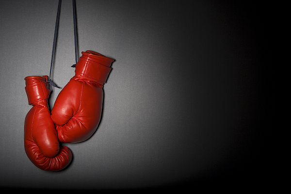 Boxing Gloves Photograph by TarpMagnus