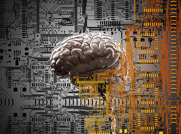 Brain Under Layers Of Circuit Board,  Drawing by John M Lund Photography Inc