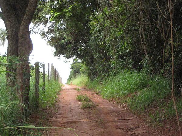Brasil Rural 4 Photograph - Brasil Rural 4 by Maria Akemi  Otuyama